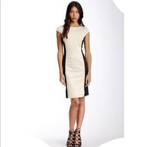 BRAND NEW! Sandra Darren ColorBlock Cap Sleeve Dress!👗